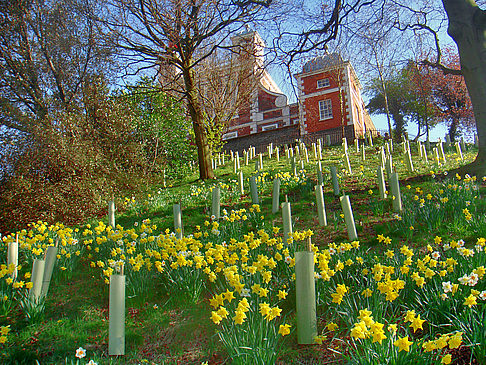 Royal Greenwich Observatory - England (London)